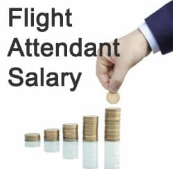 flight attendant salary